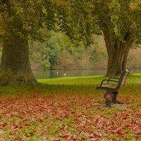 Осенние зарисовки: Темза :: Дмитрий Сорокин
