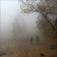 Ушли в туман. :: Anna Gornostayeva
