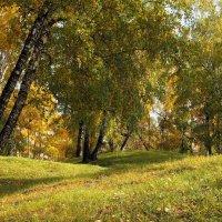 Еще недавно в парке было все таким... :: Александр Попов