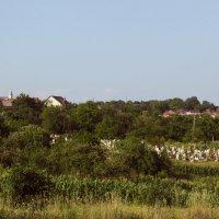 Сельское кладбище :: НаталиЯ ***