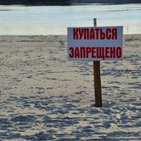 На пляжу ))) :: Наталья Мельникова