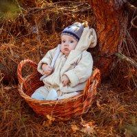 Осень :: Надя Радзік