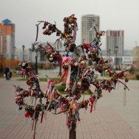 Дерево любви :: Дмитрий Арсеньев