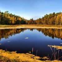 Осень :: Анастасия Ефремова