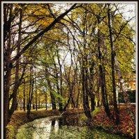 Осень в парке #4 :: Михаил Малец