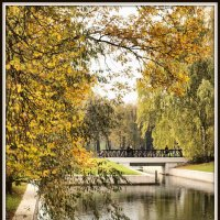 Осень в парке #2 :: Михаил Малец