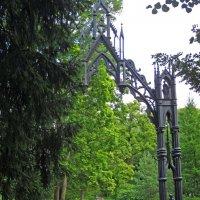 Готические ворота (Санкт-Петербург, Царское Село) :: Павел Зюзин