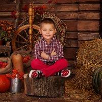 Яркие краски осени :: Алёна Жила