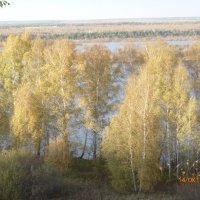 Осенние берега. :: шубнякова