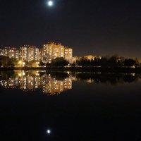 Лунная ночь опустилась над городом :: Татьяна Ломтева