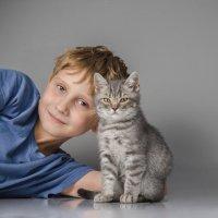 Котенок в доме- счастье ребенку. :: Анна Никонорова