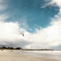 Небо - оно никого не оставляет равнодушным :: Anna Shevtsova