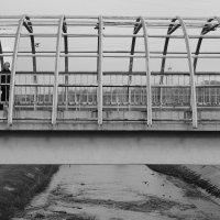 На мосту :: Радмир Арсеньев