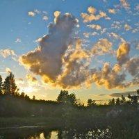 олимпийский мишка в небе :: Елена