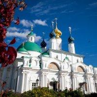 Спасо-Яковлевский Димитриев мужской монастырь :: Мария Корнилова
