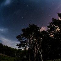 Ночь :: Diana Proskurina