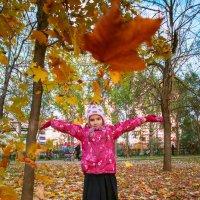 Веселая осень :: Алексей Шеметьев