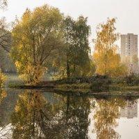 Осень :: Elena Ignatova