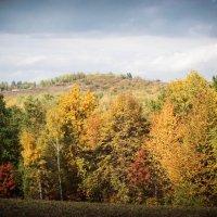 Осень 2 :: Володя Корнеюк
