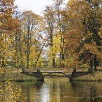 Осенний парк :: Александр Петров