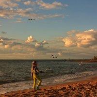 Девочка и чайки :: Виктор Мороз