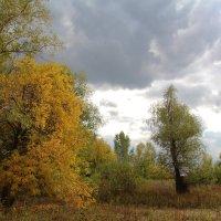 Осенние пересветы :: Dr. Olver  ( ОлегЪ )