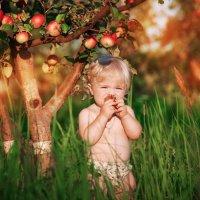 Райский яблочки... :: Римма Гусакова