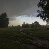 эти летние дожди... :: Moscow.Salnikov Сальников Сергей Георгиевич