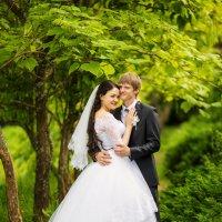 Жених и невеста :: Светлана Луковникова