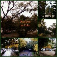 Осень в Баку :: maxim