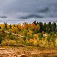осень... :: Александр Никитинский