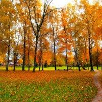 Осень. :: Алексей Жуков