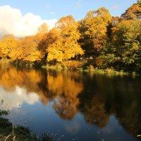 Осень у реки :: Татьяна Беляева