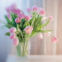 Просто цветы :: Diana Proskurina