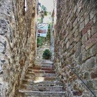 Лестницы Котора :: Светлана Игнатьева