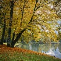 Осень :: Sergey Polovnikov