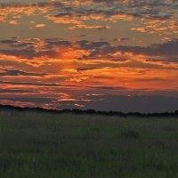 Закат в поле :: Юрий Пузанов