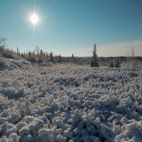 Мороз и солнце!!!! :: Олег Кулябин