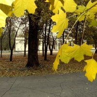 Осенний сквер... :: Сергей Петров