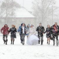 снег на счастье... :: Виталий Левшов