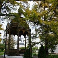 Иосифо-Волоцкий монастырь. Ажурная деревянная беседка :: Елена Павлова (Смолова)