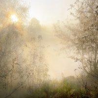 Просто туманный рассвет... :: Андрей Войцехов