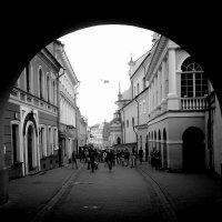 Улица :: Antonina Volkova