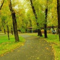 парк :: Карина Картина