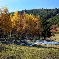 Осень в горах :: Roman Arnold