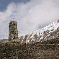 Сторожевая башня :: Олег Фролов