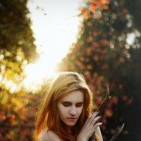 Песнь осени :: Margarita Eliseeva