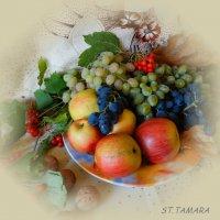 Плоды осени... :: Тамара (st.tamara)