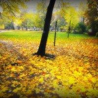 Осенний дворик :: Александр Винников