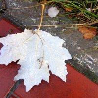 Вот лист на землю уж ложится . :: Мила Бовкун